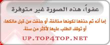 رجل مغربي يرمي اكثر من 22 ألف دولار في الشارع على الملأ